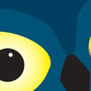 Nachts sind die Augen am größten: 19. Museumnacht Dresden